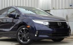 Odyssey V (facelift 2020)